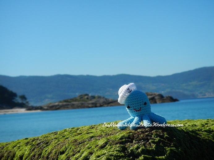 Pulpo amigurumi ganchillo crochet octopus (4)